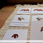 The Montessori Work Mat: Everything You Need to Know